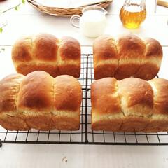おうちごはん/はちみつ/食パン 朝食用に、はちみつたっぷり、水分は牛乳1…