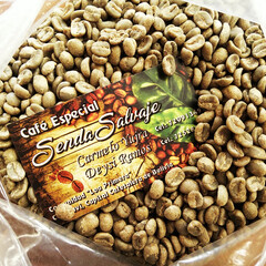 お土産/ボリビア/コーヒー豆 ボリビアからのおみやげで、コーヒーの生豆…