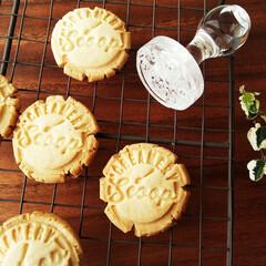 クッキー/マクロビ/スタンプ クッキー用のスタンプを押したメープルクッ…