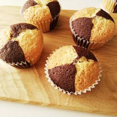 カップケーキ/プレーン/ココア/おやつ ひとつ前の写真のケーキ生地の、焼きあがり…