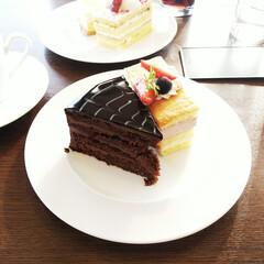 ケーキ/オペラ/ドライブ 相当色々なものを食べたドライブでしたが、…