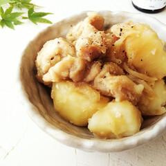 生姜/じゃがいも/魚醤/鶏肉 鶏肉とじゃがいもの生姜煮を作りました。 …