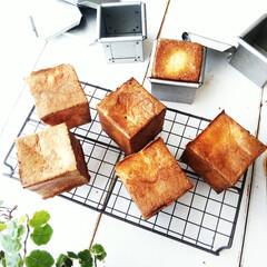 ポップオーバー/焼き菓子/パン型 小さなキューブパン型を使い、ポップオーバ…