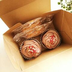 カップケーキ/ココア/バターサンド ケーキ屋さんみたいなケーキ箱に、カップケ…