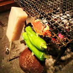 蟹/田楽/炭火焼き ししとうの先に、一口大の小さな蟹が♪ 大…