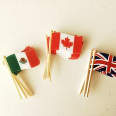 ピック/国旗/雑貨だいすき それぞれの国の料理を作る時に飾りたいと思…
