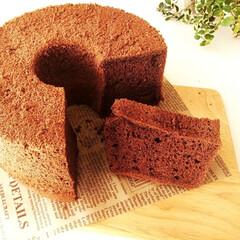 シフォンケーキ/ふわふわ/ココア 食べごたえがある大きなシフォンケーキ。 …