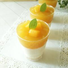 マンゴープリン/チーズムース ふんわりなめらかな食感の、爽やかな風味の…