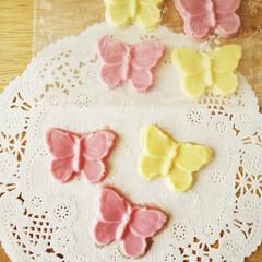 チョコレート/いちご/レモン/蝶/春のフォト投稿キャンペーン/わたしのお気に入り ストロベリー味とレモン味の一口チョコレー…