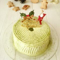 クリスマス/抹茶/ブッシュ・ド・ノエル 小さなシフォンケーキに、切株に見立てて抹…(1枚目)