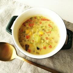 スープ/ミルク/野菜 いろんな野菜たっぷりの具だくさんミルクス…