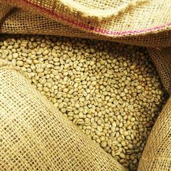 コーヒー/コーヒー豆/麻袋 仕事場から一枚。 こちらは麻袋に入ったコ…