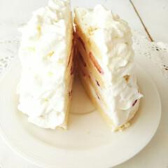ハンドメイド/ショートケーキ/フリル ひとつ前に載せたケーキの、断面です。 普…