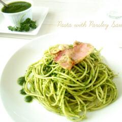 おうちごはん/イタリアンパセリ/ソース 鉢植えのイタリアンパセリがたくさん育つと…