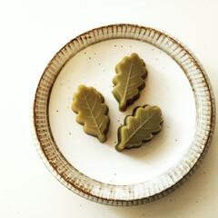 春のフォト投稿キャンペーン/抹茶/白ごま/わたしのお気に入り 抹茶と白練りごまの水羊羹です。 この葉っ…