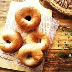 ライ麦/ベーグル/朝食/わたしのごはん 朝食用にライ麦粉を配合したベーグルを焼き…