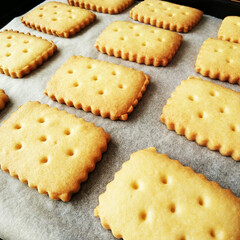 ビスケット/クッキー/はらぺこグルメ 外国のビスケット型で抜いたクッキー。 こ…
