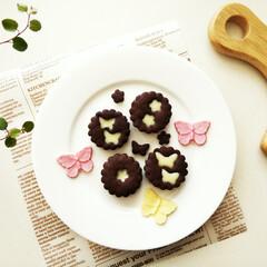 生チョコ/クッキー/春のフォト投稿キャンペーン/わたしのお気に入り サクッと甘さ控えめなココアクッキーと、甘…