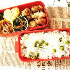 令和元年フォト投稿キャンペーン/弁当/からあげ 娘に作ったお弁当。 リクエストはわ畑のグ…(1枚目)
