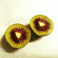 キウイ/赤/フルーツ 「レインボーレッド」という名前のキウイを…
