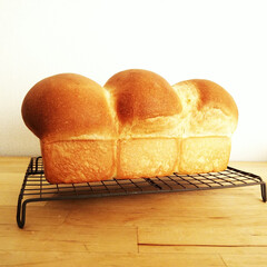 食パン/きのこ/こんがりグルメ 1斤分の食パン生地を、半分の高さ・1/2…