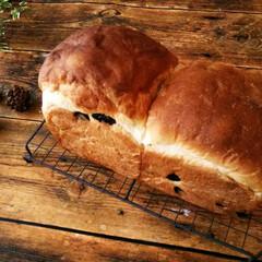 ハンドメイド/食パン/レーズン レーズンをキロ買いしたので、まずはほんの…