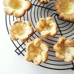 花/パイ/タルト おおきな花の抜き型を使い、パイを作りまし…