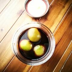 Ball メイソンジャー ワイドマウス 500cc 48703(その他キッチン、日用品、文具)を使ったクチコミ「梅シロップ作りであまった梅はしょうゆ漬け…」