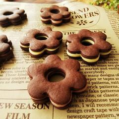 スライス生チョコレート/クッキー/チョコサンドクッキー おやつに生チョコサンドクッキーを作りまし…