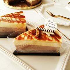 ケーキ/ムース/チョコレート/キャラメル ムースケーキの持ち運びに、便利なフィルム…