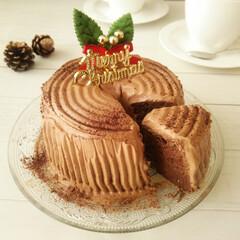 クリスマス/チョコレート/ブッシュ・ド・ノエル 1つ前に載せた写真のケーキの、断面です。…