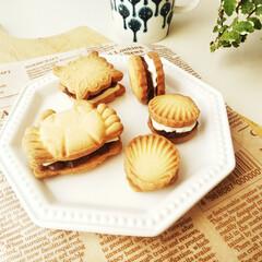 餡バター/餡チーズ/クッキー お茶のお供に作った、餡バター&餡チーズサ…