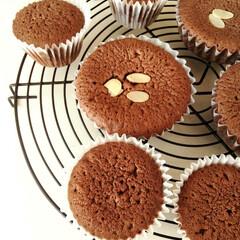 カップケーキ/ココア/マドレーヌ バター不使用の生地で、ココアのカップケー…