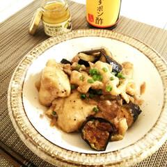 なす/鶏肉/ポン酢 鶏肉となすのみぞれ煮です。 味付けは塩コ…