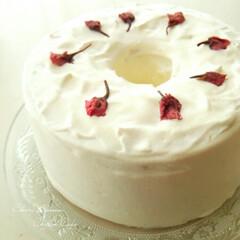 シフォンケーキ/桜/わたしの手作り 桜の塩漬けやリキュールを混ぜこんで焼いた…