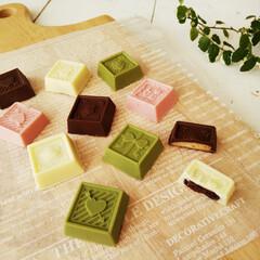 チョコレート/ビスケット/バレンタイン 今週末は娘が友チョコ作りをするそうなので…