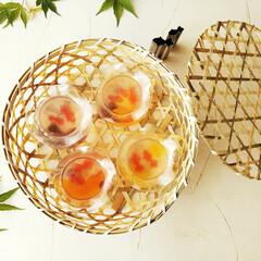 雑貨だいすき/金魚ゼリー/かご 金魚鉢のような形のカップに、金魚の形をし…