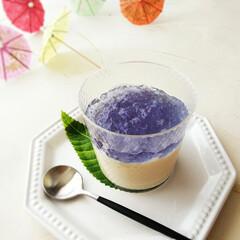 雑貨だいすき/傘/紫陽花ゼリー 豆乳プリンに、天然の青い色素が特徴のバタ…