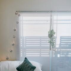 ベッドルーム/間接照明/ライト/ブラインド/クリスマスデコレーション/一人暮らしインテリア/... 今日も素敵な朝。ブラインドから透ける光と…