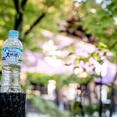 水/天然水 私にとっての必需品はなんといっても水! …