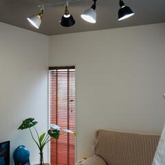 シーリングライト/LED電球/調光調色/リモコン操作 【シーリングアダプター2個付き】ライティ…