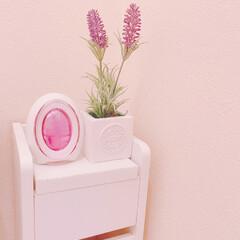 防臭/芳香剤/消臭剤/トイレ消臭剤/トイレ/トイレ掃除/... 壁も床も防臭☺︎【ファブリーズ】 我が家…