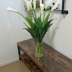 カラー/ガラス花瓶/花瓶/インテリア/花の飾り方/花のある暮らし/... お家時間もお花があるだけで癒されます。パ…(1枚目)