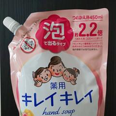 ライオン キレイキレイ 薬用 泡ハンドソープ フルーツミックスの香り つめかえ用大型 450ml | ライオン(ハンドケア)を使ったクチコミ「我が家のハンドソープは泡タイプです。 こ…」