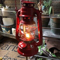 虫除けパラフィンオイル/オイルランタン パラフィン虫除けオイルを使ってランタン灯…(1枚目)