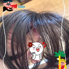 ウイッグつけてみました❣️ 髪が痛んで乾燥と共に残念な感じで染めに行…(2枚目)