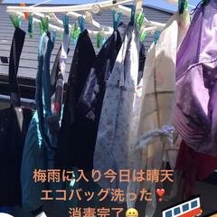 エコバッグ綺麗に洗おう❣️/紫外線消毒 梅雨に入りまさかこんなに晴れるなんて、せ…(1枚目)