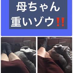 頼りになるゾウ枕 フィギュアスケート⛸男子見ながら足が辛い…(1枚目)