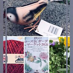 本日のガーデン商品購入 秋のローズ&ガーデンマーケットでお花と雑…