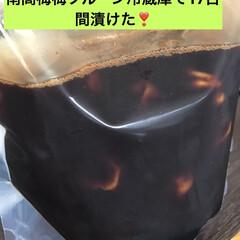 南高梅の梅プルーン 南高梅800グラム、純粋蜂蜜🍯400g、…(1枚目)